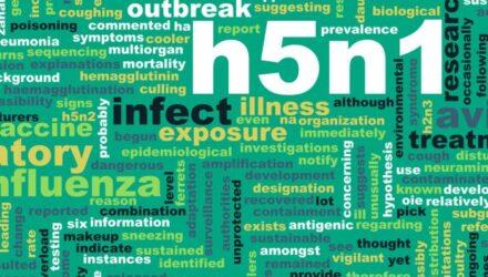 Только 34% циркулирующих штаммов гриппа A(H3N2) совпали с представленными в вакцинах